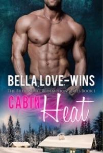 Cabin Heat